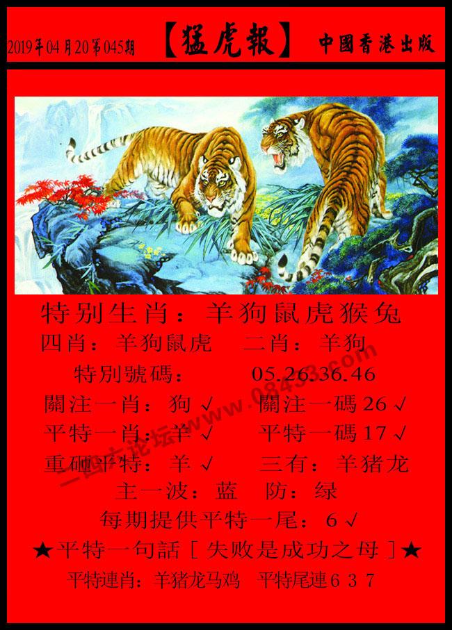 045期:发财报-猛虎报