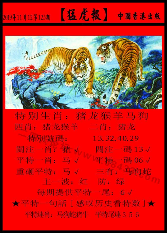 125期:发财报-猛虎报