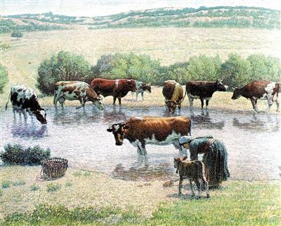 127期每日闲情:牛群