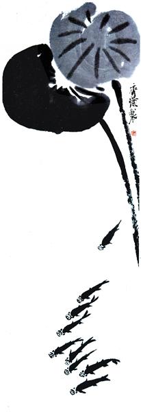 133期每日闲情:荷塘鱼乐