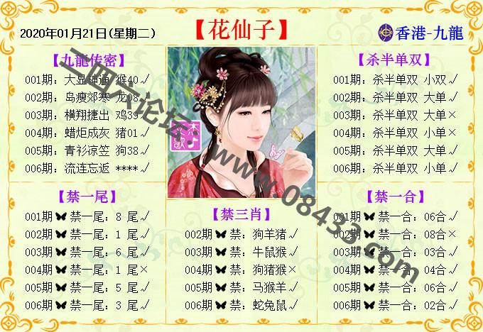 006期:花仙子