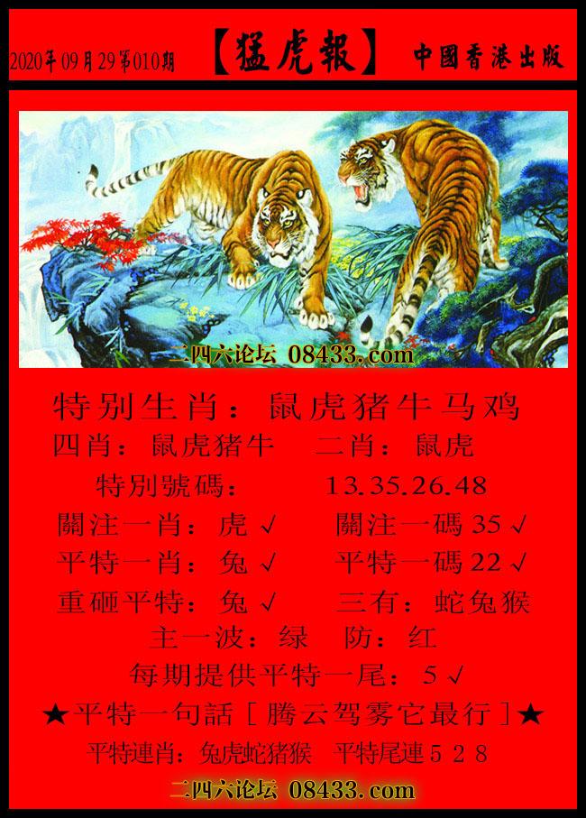 010期:猛虎报-发财报