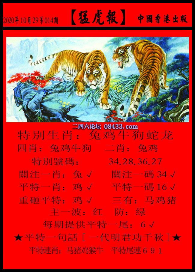 014期:猛虎报 + 发财报