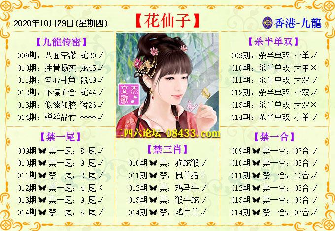 014期:花仙子