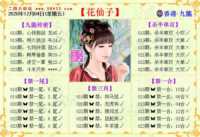023期:花仙子