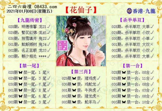 003期:花仙子