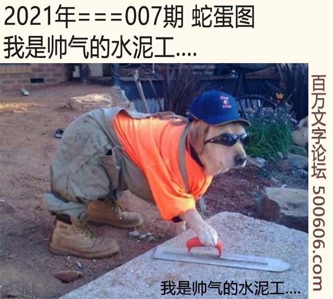 007期蛇蛋图:我是帅气的水泥工....