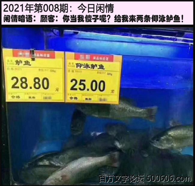 008期今日闲情:顾客:你当我傻子呢?给我来两条仰泳鲈鱼!