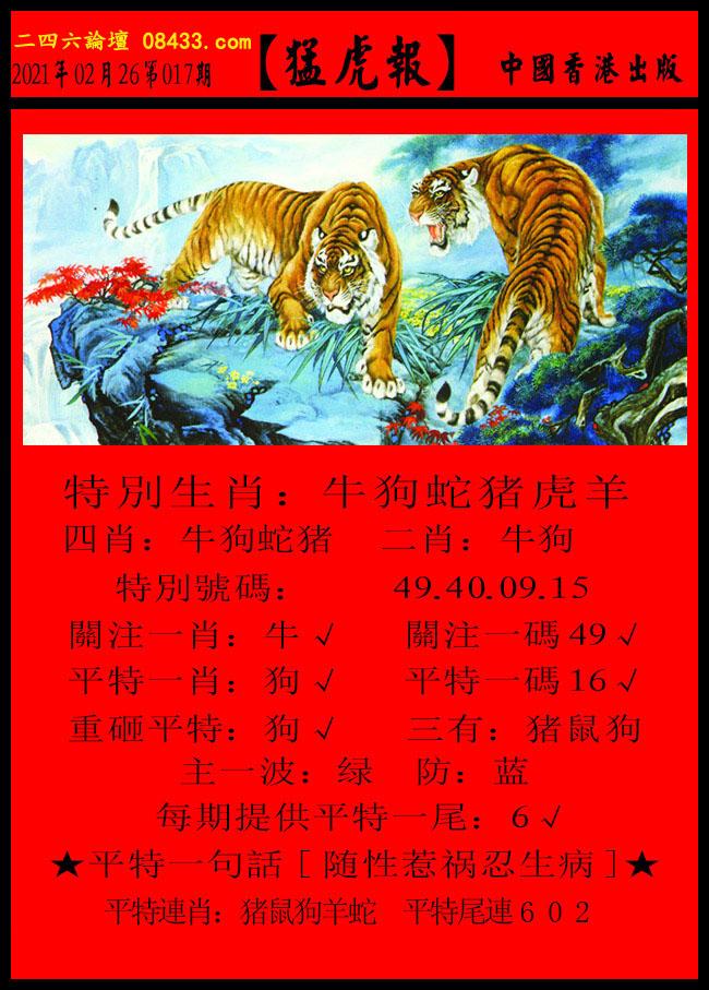 017期:猛虎报 + 发财报
