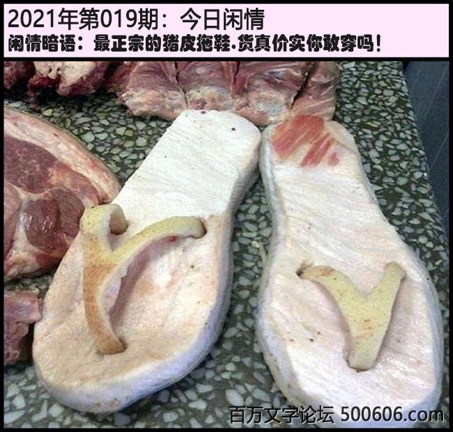 019期今日闲情:最正宗的猪皮拖鞋,货真价实你敢穿吗!