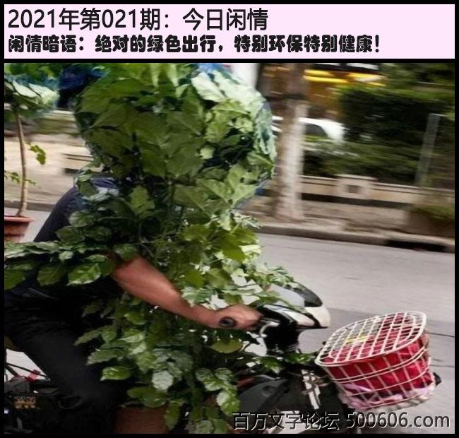 021期今日闲情:绝对的绿色出行,特别环保特别健康!