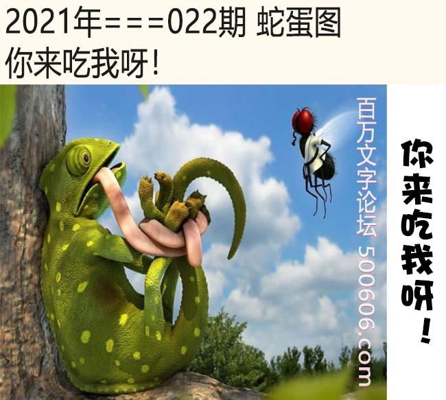 022期蛇蛋图:你来吃我呀!