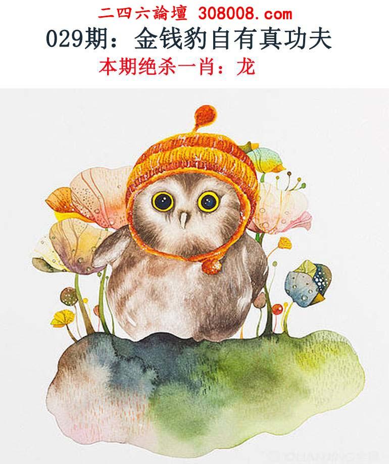 029期:金钱豹自有真功夫