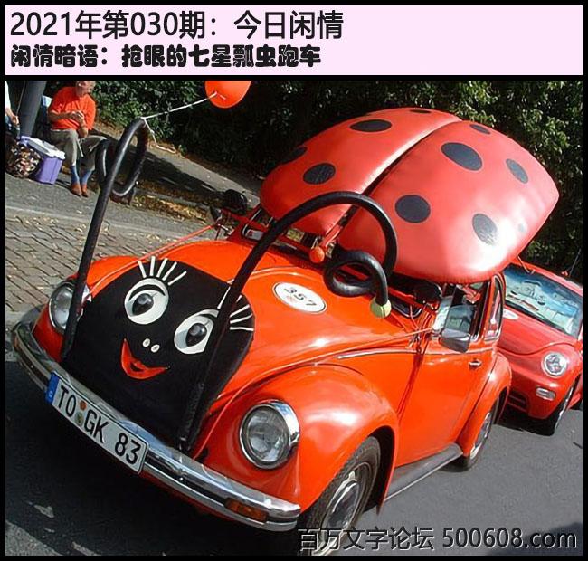 030期今日闲情:抢眼的七星瓢虫跑车
