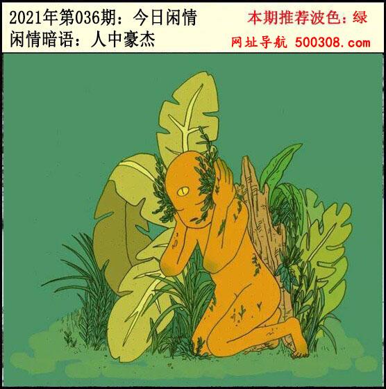 036期:今日闲情2