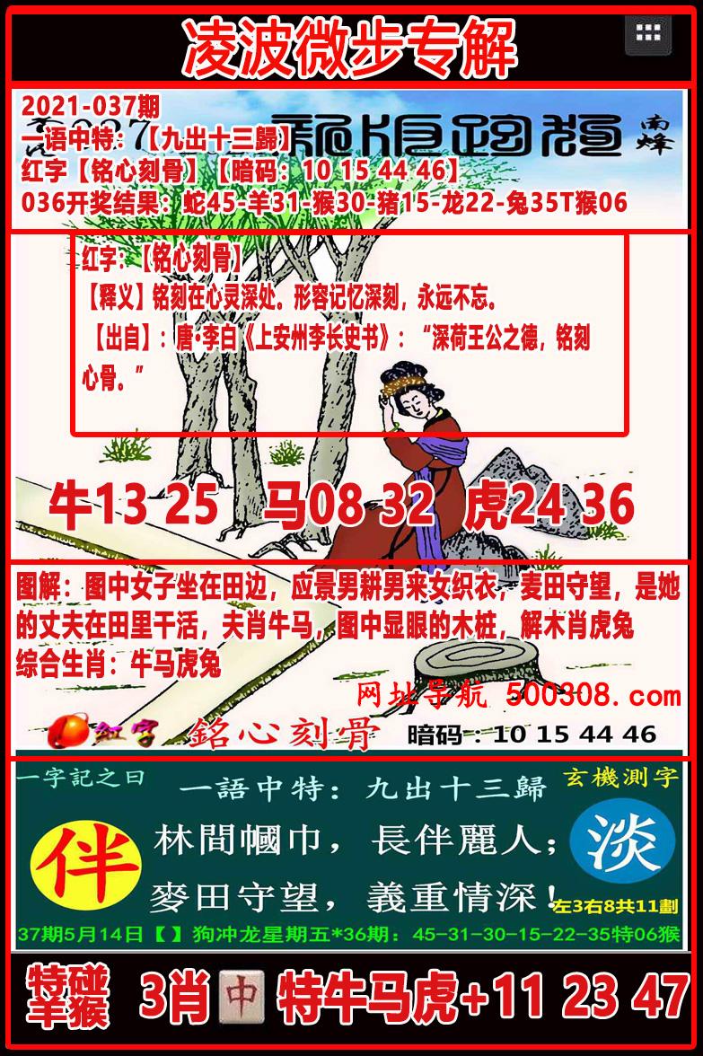 037期:凌波微步专解跑狗