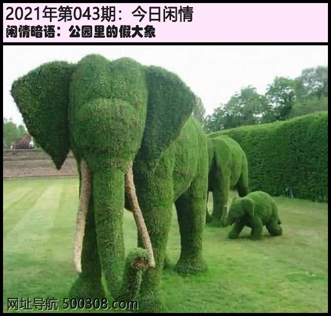 043期今日闲情:公园里的假大象
