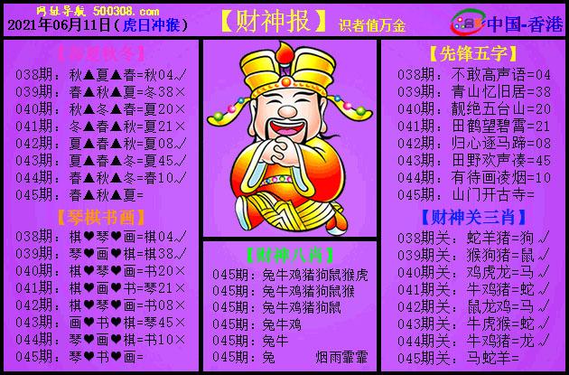 045期:紫财神报