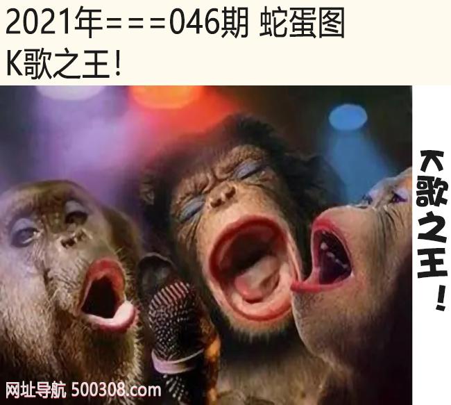 046期蛇蛋图:K歌之王!