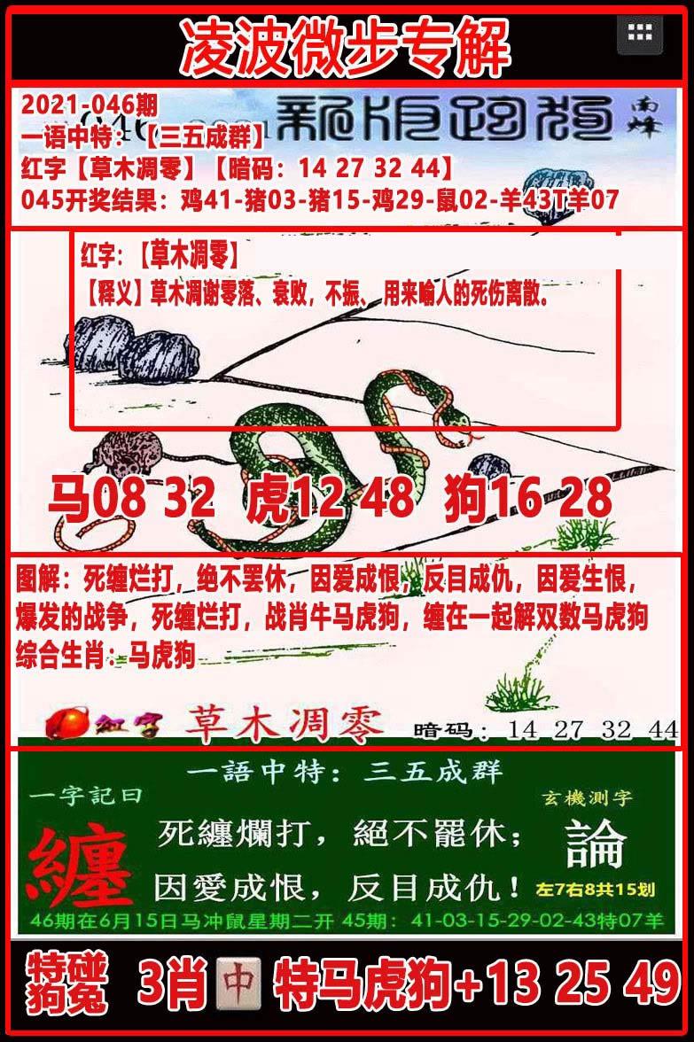 046期:凌波微步专解跑狗
