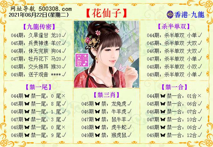 049期:花仙子