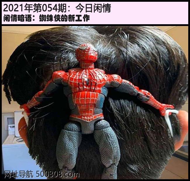 054期今日闲情:蜘蛛侠的新工作