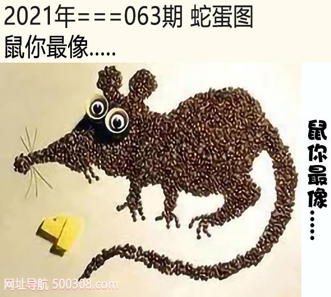 063期蛇蛋图:鼠你最像.....