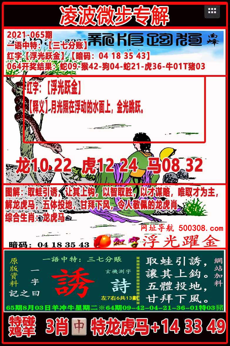 065期:凌波微步专解跑狗