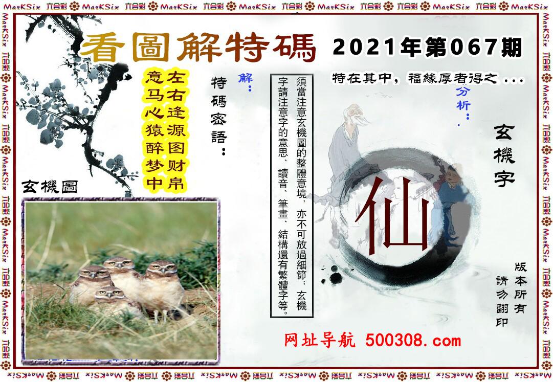 067期:马会内幕原创→〖看图解特码〗