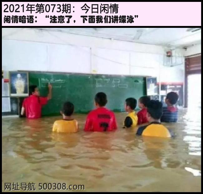 """073期今日闲情:""""注意了,下面我们讲蝶泳"""""""