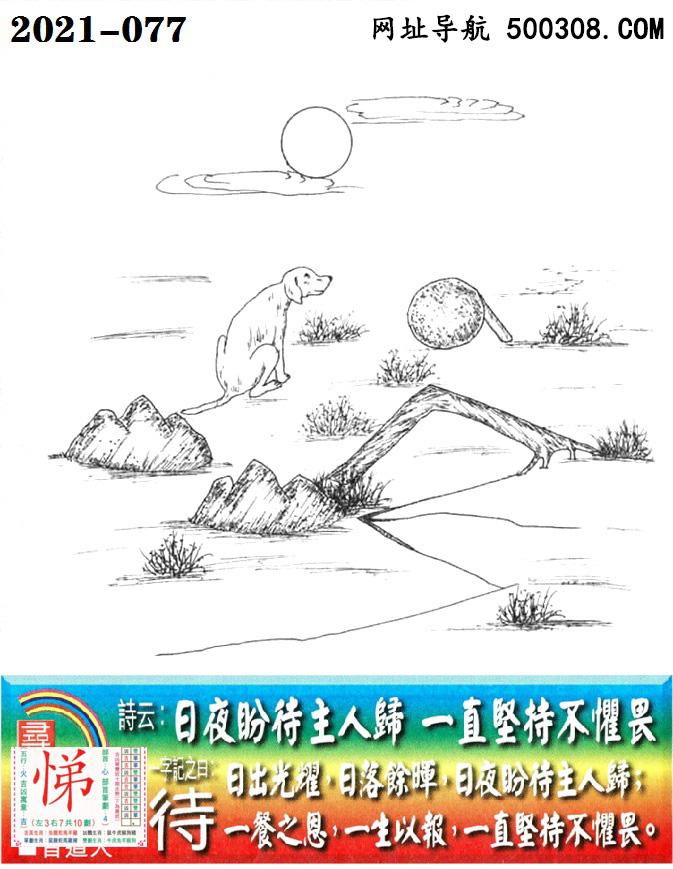 077期老版跑狗一字�之曰:【待】_��:日夜盼待主人�w,一直�猿植�治贰�