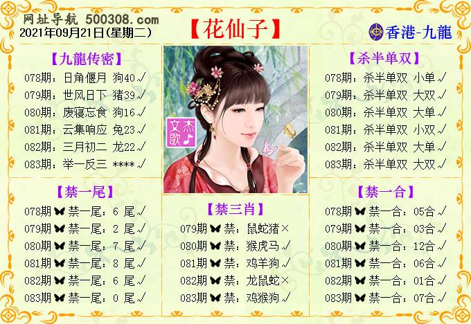 083期:花仙子