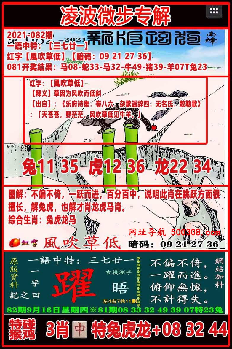 082期:凌波微步专解跑狗