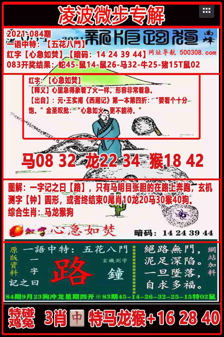 084期:凌波微步专解跑狗