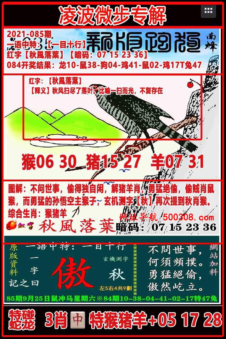 085期:凌波微步专解跑狗
