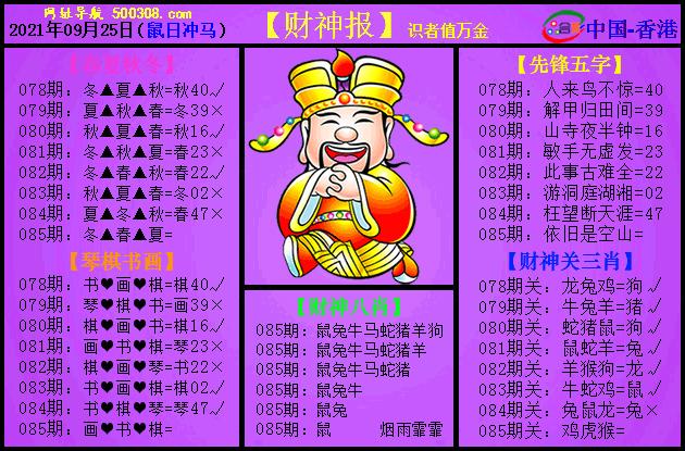 085期:紫财神报