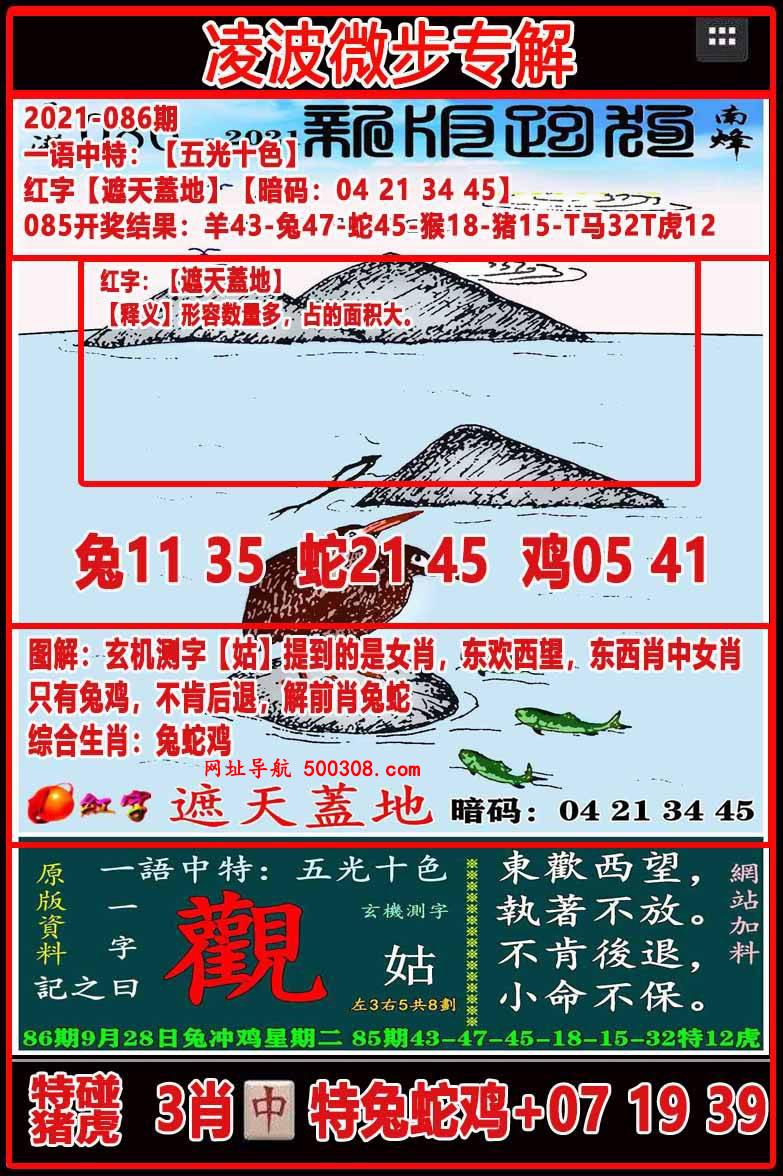 086期:凌波微步专解跑狗