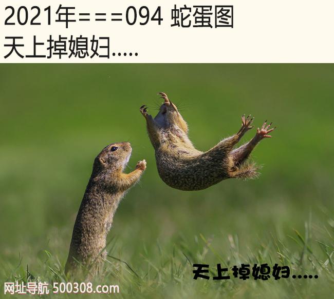 094期蛇蛋图:天上掉媳妇.....