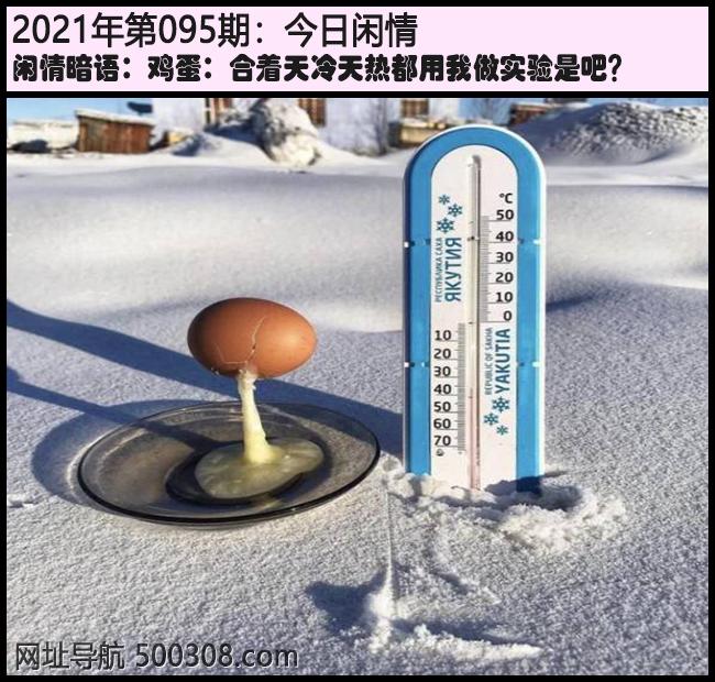 095期今日闲情:鸡蛋:合着天冷天热都用我做实验是吧?